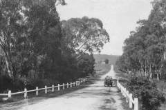 Beaumont Road, c1913 (State Library of South Australia - B763)